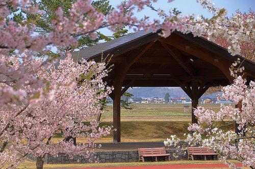 この画像は、サイトの記事「春高バレー 雄物川高校 ネットで話題 YouTube注目無料視聴動画ご紹介!」のイメージ写真画像として利用しています。